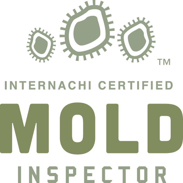 Covington mold inspection near me